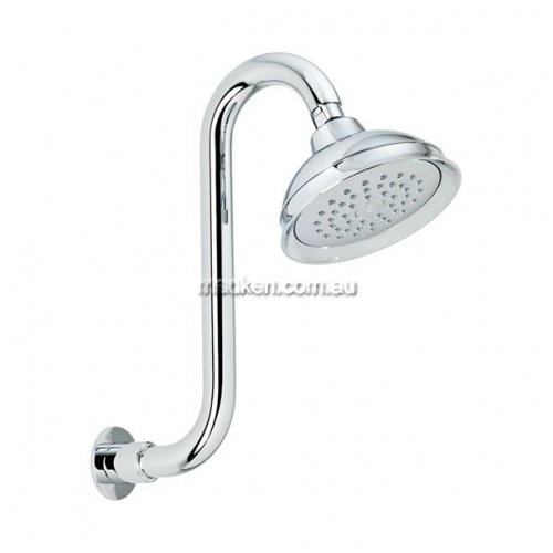 OH005E Shower Head Swan Neck